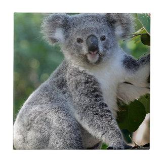 Cute cuddly Australian koala Small Square Tile