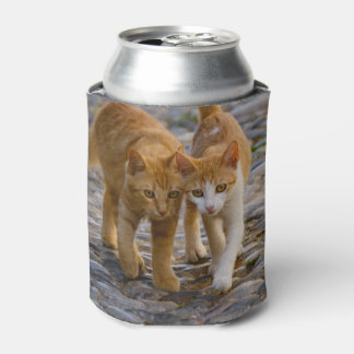 Cute Cuddly Cats Kittens Friends Stony Path Photo Can Cooler