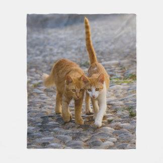 Cute Cuddly Cats Kittens Friends Stony Path Photo Fleece Blanket