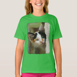 Cute Curious Cat Kitten Prying Eyes Photo - girl T-Shirt