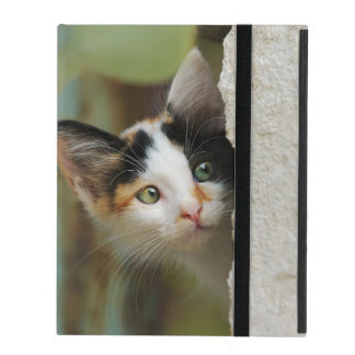 Cute Curious Cat Kitten Prying protective Hardcase iPad Cover