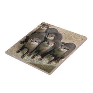 Cute Curious River Otters Wildlife Photography Tile