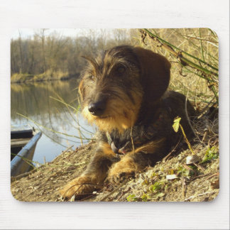 Cute Dachshund at the lake Mouse Pad