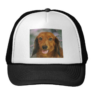 Cute Dachshund (Brown Long Haired) Wild Flowers Cap