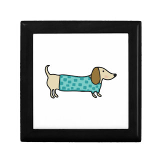 Cute dachshund in mint blue gift box