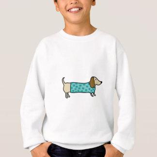 Cute dachshund in mint blue sweatshirt