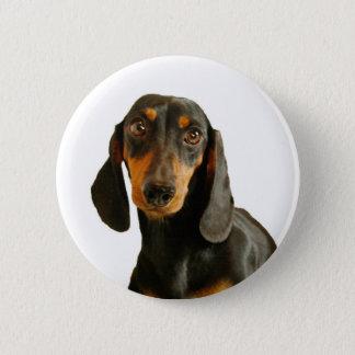 Cute Dachshund ( Miniature Brown Short Haired ) 6 Cm Round Badge