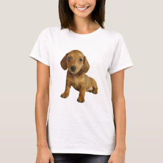 Cute Dachshund  Puppy (Cream Brown) Sitting T-Shirt