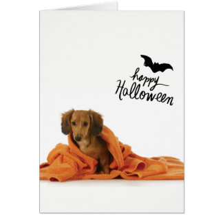 Cute Dachshund puppy in orange blanket Halloween Card