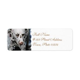 Cute Dalmatian Address Labels