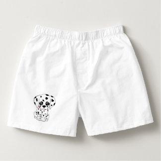 Cute Dalmatian puppy Boxers