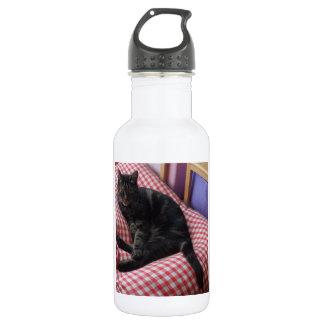 Cute Dave Water Bottle (532 ml)