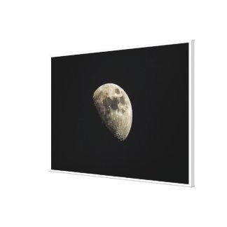 Cute Detailed Moon Canvas Print