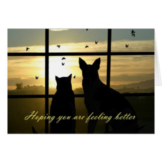 Cute Dog and Cat In Window Feel Better Card