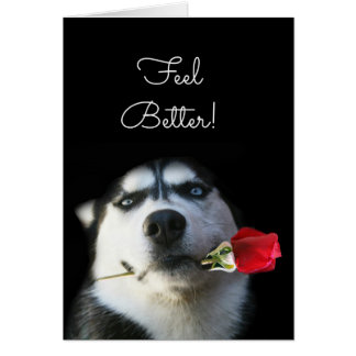 Cute Dog and Flower Feel Better Get Well Card