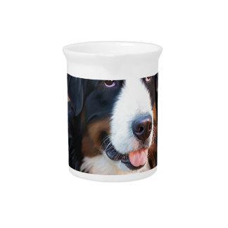 Cute dog animal beautiful pitcher