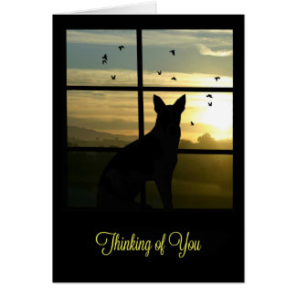 Cute Dog in Window Thinking of You Note Card