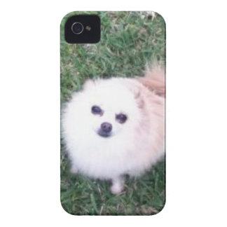 Cute Dog iPhone 4 Case-Mate Case
