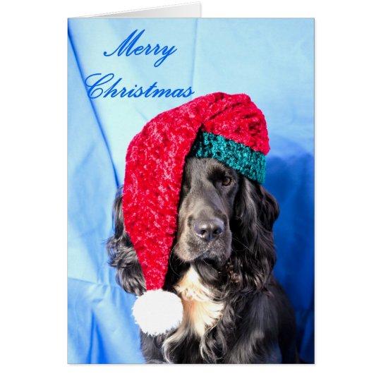 Cute Dog Merry Christmas Card