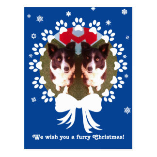 Cute Dog or Cat Paws Holiday Photocard Postcard
