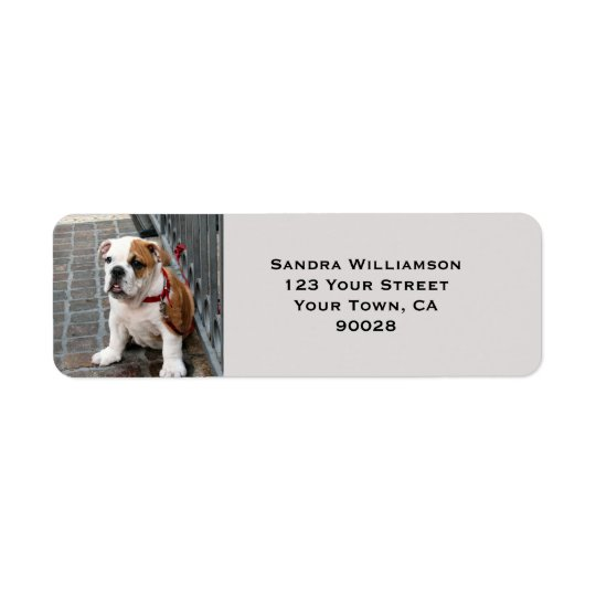 Cute dog return address label