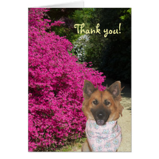 Cute Dog Thank You Card