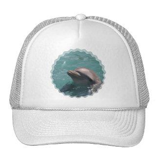 Cute Dolphin Baseball Hat