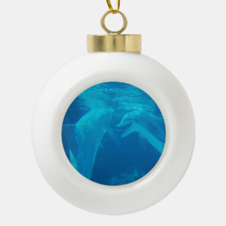 Cute Dolphin Ornaments