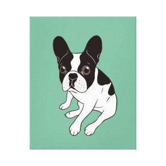 Cute double hooded pied Frenchie is chilling Canvas Print