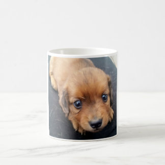 Cute Doxie Pup Mug