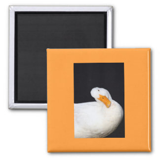 Cute Duck Square Magnet