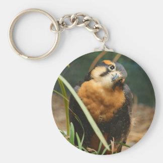 Cute falcon keychain