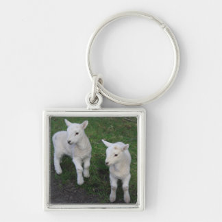 Cute Farm Ranch Baby Twins Sheep Lamb Key Ring