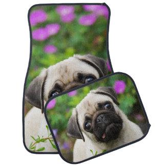 Cute Fawn Coloured Pug Puppy Dog, floor-mats Floor Mat
