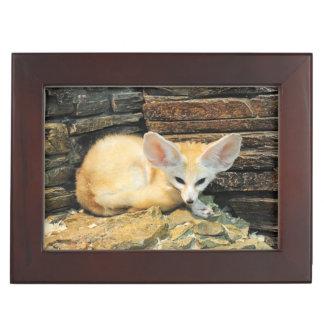 Cute fennec fox keepsake box