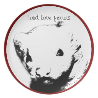 Cute Ferret Picture Plate