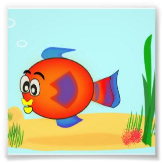 Cute fish Underwater Scene Photograph