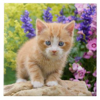 Cute Fluffy Ginger Cat Kitten Flowers Pet Photo -- Ceramic Tile