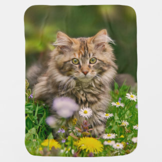 Cute Fluffy Maine Coon Kitten Cat Animal Photo on Baby Blanket