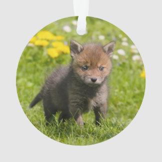 Cute Fluffy Red Fox Cub Wild Baby Animal - acrylic Ornament