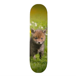 Cute Fluffy Red Fox Cub Wild Baby Animal Photo - Custom Skateboard