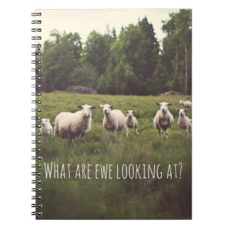 Cute Fluffy White Sheep & lambs in pasture photo Spiral Notebook