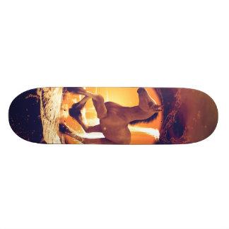 Cute foal skateboard