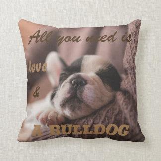 Cute french bulldog|| all you need is... cushion