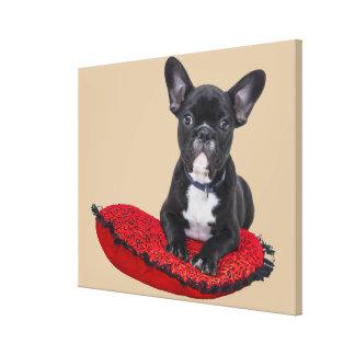 Cute french bulldog on pillow canvas print