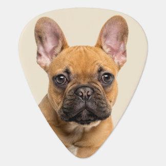 Cute French Bulldog Puppy Guitar Pick