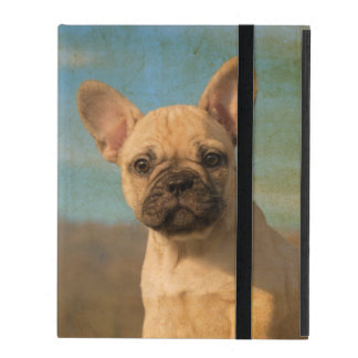 Cute French Bulldog Puppy -  protective Hardcase iPad Cover