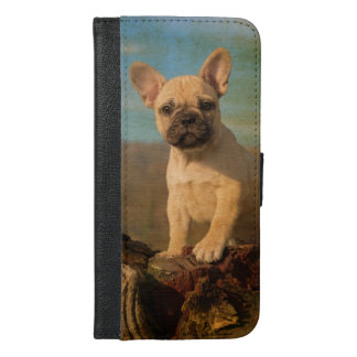 Cute French Bulldog puppy, vintage