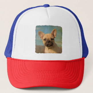 Cute French Bulldog Puppy Vintage Photo - cap