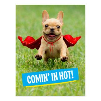 Cute French Bulldog Superhero Runs in Grass Postcard